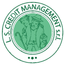Ls Credit Management Logo